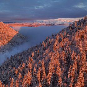 Journée internationale de la montagne